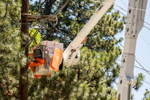 Expansion of services - photo of work crews installing electric cables